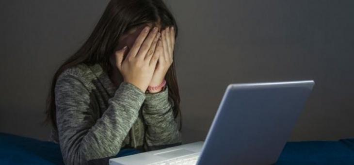 Il cyberbullo: figlio di una carenza affettiva